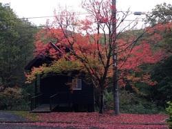 きよみづ郷の紅葉