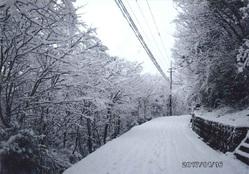 きよみづ郷の冬2