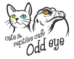 相模原市猫&爬虫類カフェOdd Eye