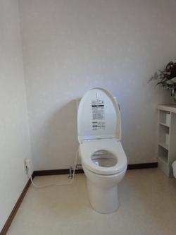 トイレ手すり取付前