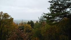 中野邸 庭園の展望台から見た市街地