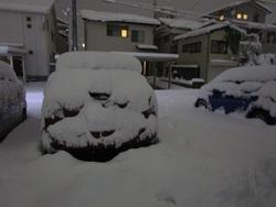 駐車場の車の雪