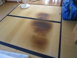 ホットカーペットで焦げた畳